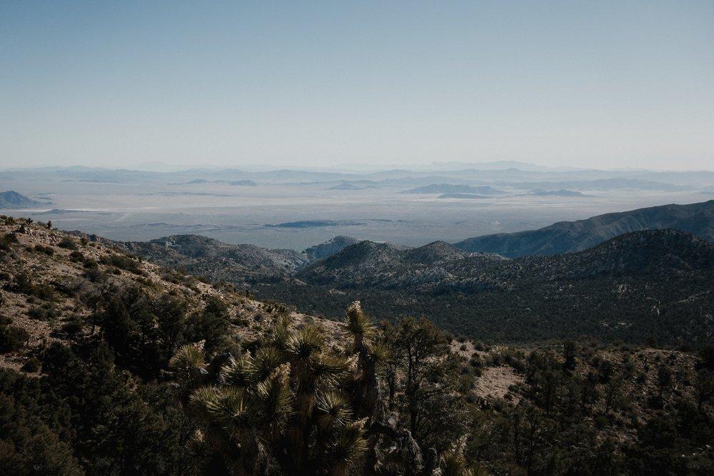 Views at the desert.