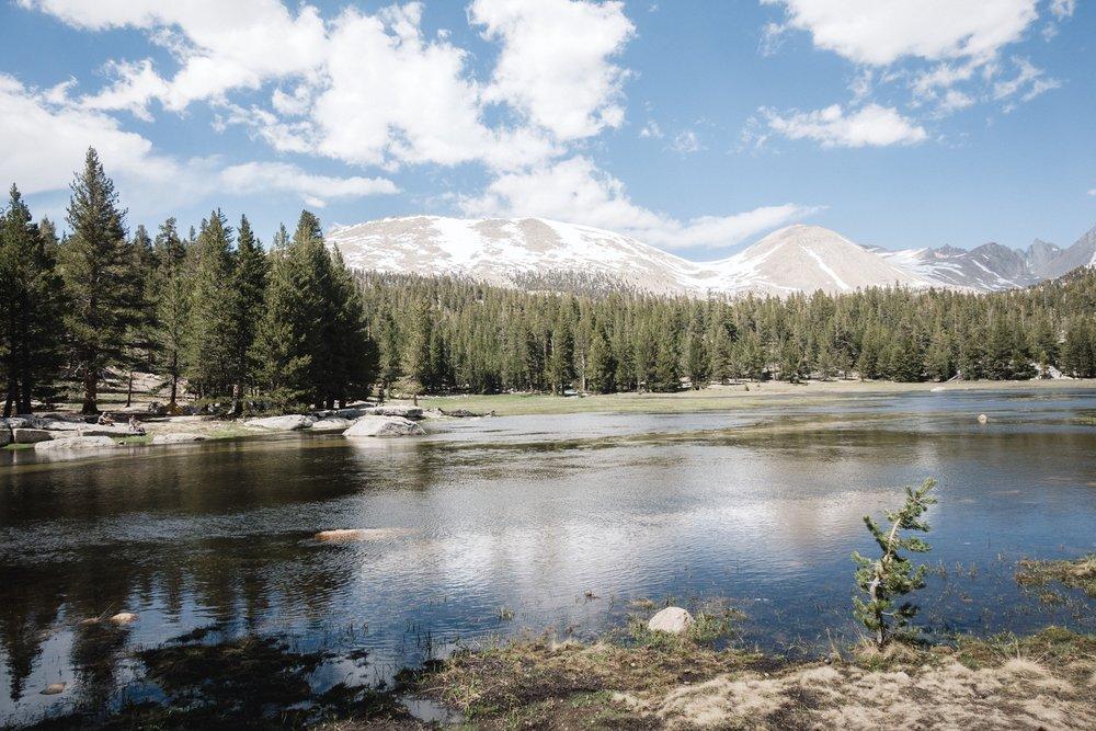 Whitney Creek.