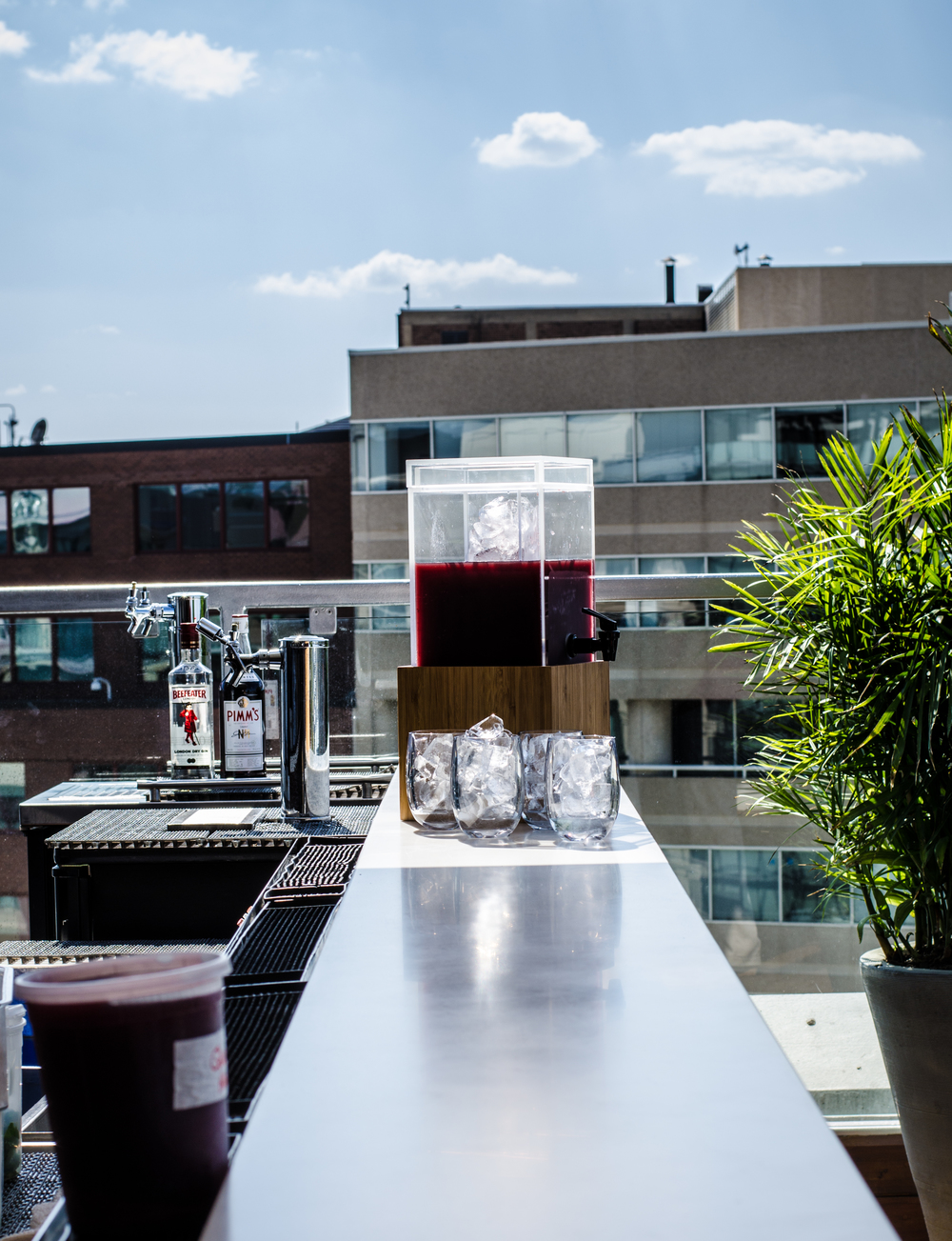 Donovan Rooftop pool bar opening.jpg