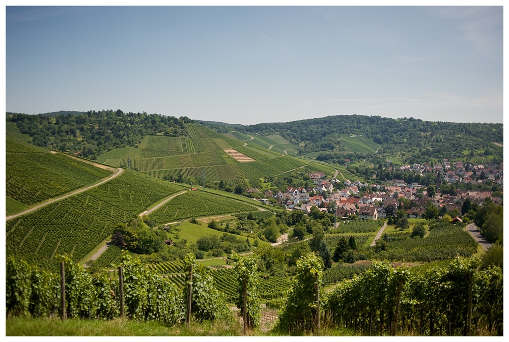 BloomandLo_AtlantaPhotographer_TravelPhotographer_TravelPhotography_Stuttgart_Germany_Vineyard_Europe_AmeliaTatnall_0001.jpg