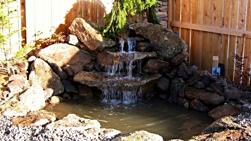 Tree Waterfall.JPG