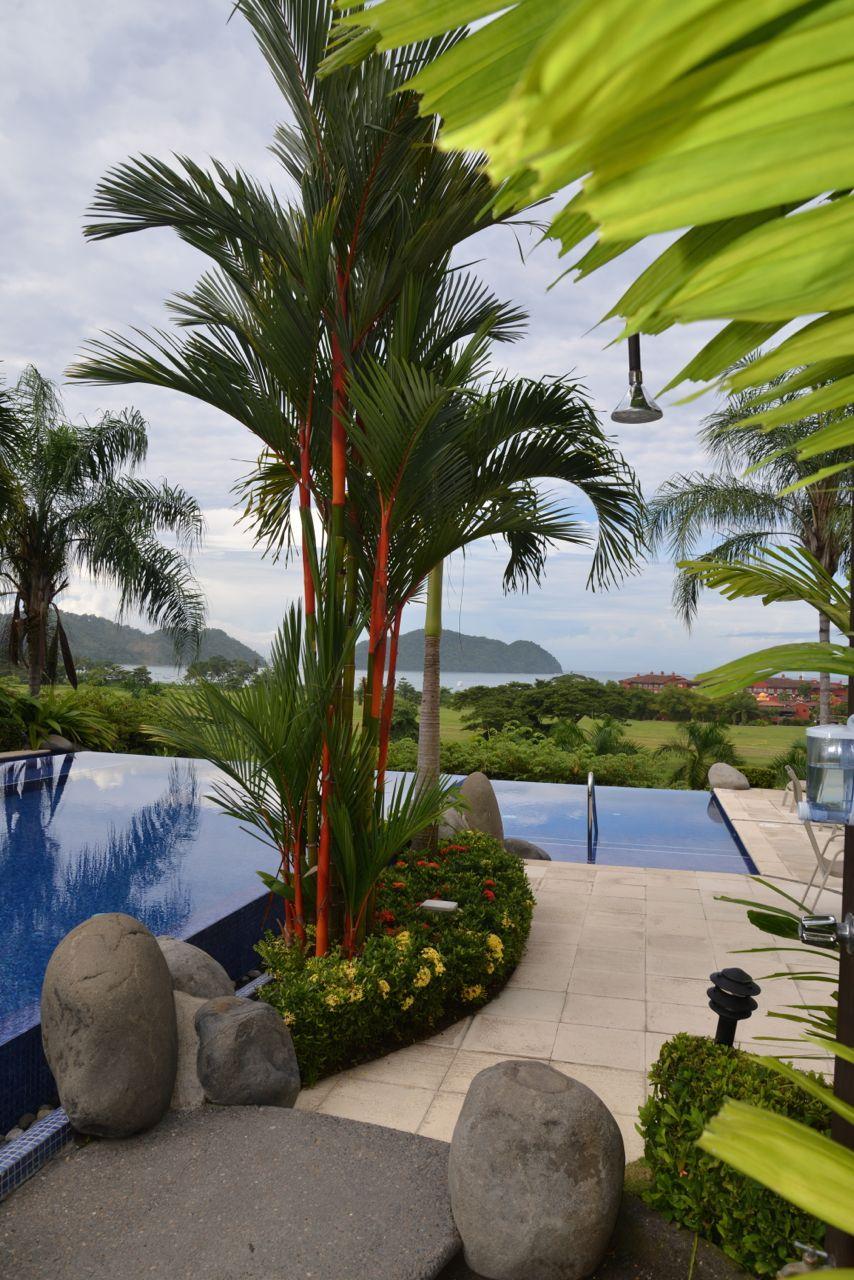 Vista Bahia 307.jpg