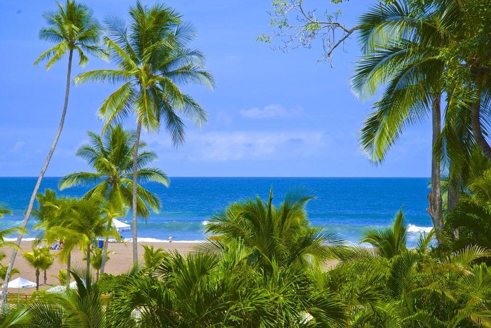 pacific-coast.jpg