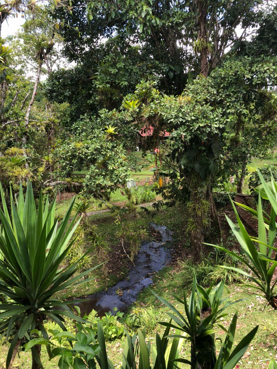 Private Creek