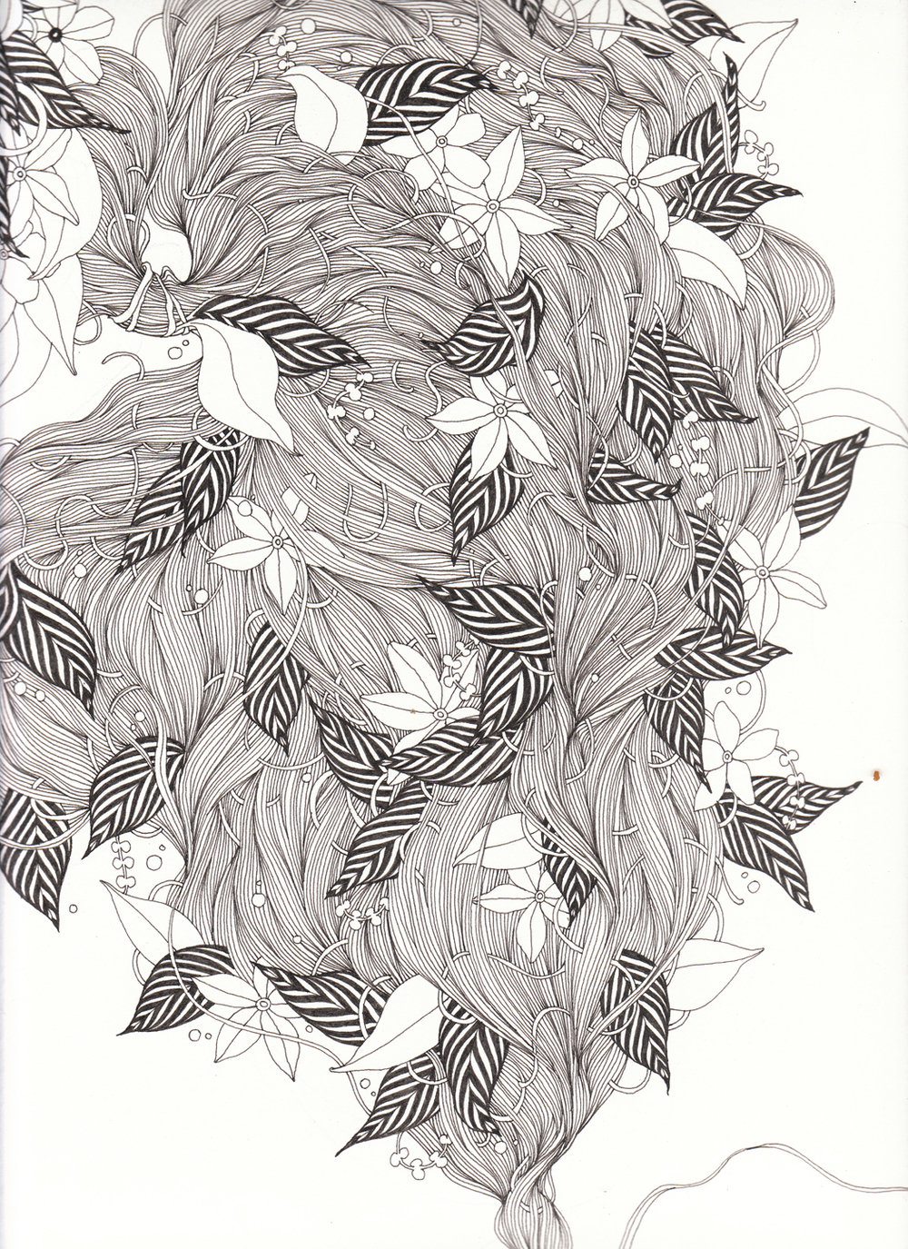 "Hair II, 9"" X 12"", ink on paper, 2011"