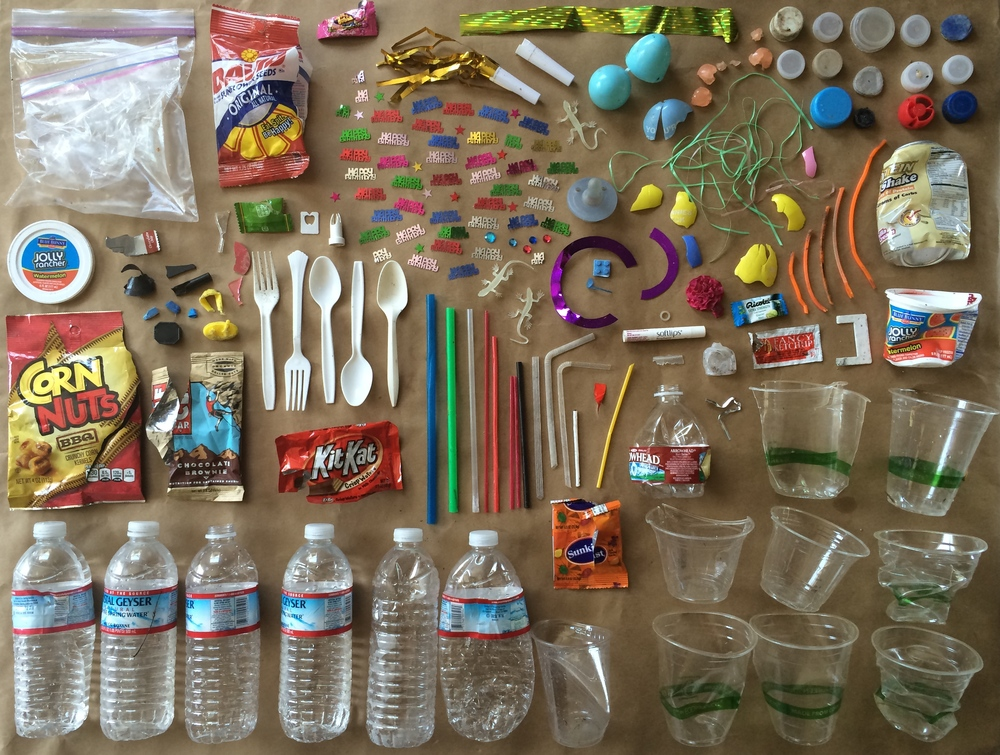 Plastic (including laser cut birthday confetti and plastic lizards) collected during 1 hour dog walk at Memorial Park in San Anselmo