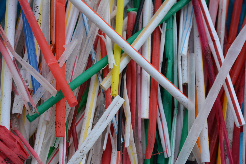 I picked up these 200 straws from the beaches in Bolinas over the span of a week in January 2015