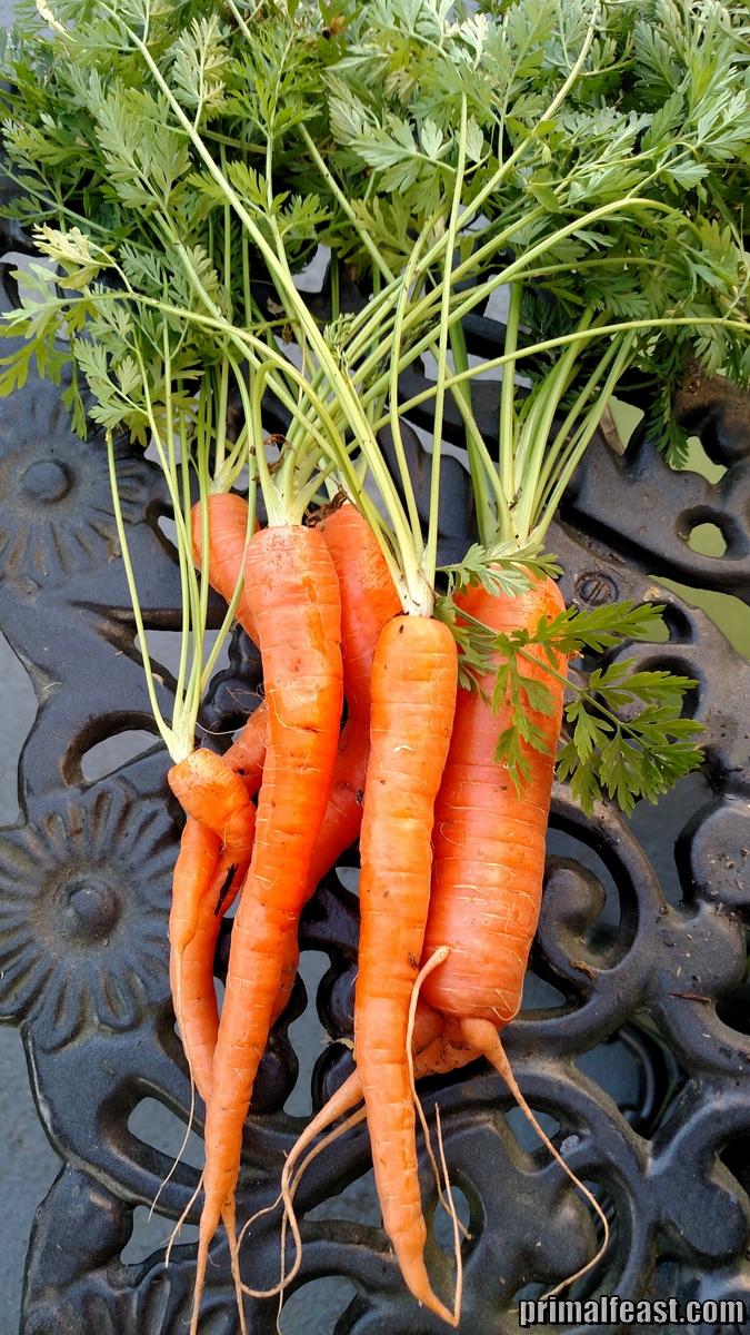 2015-0323-carrots-001.jpg