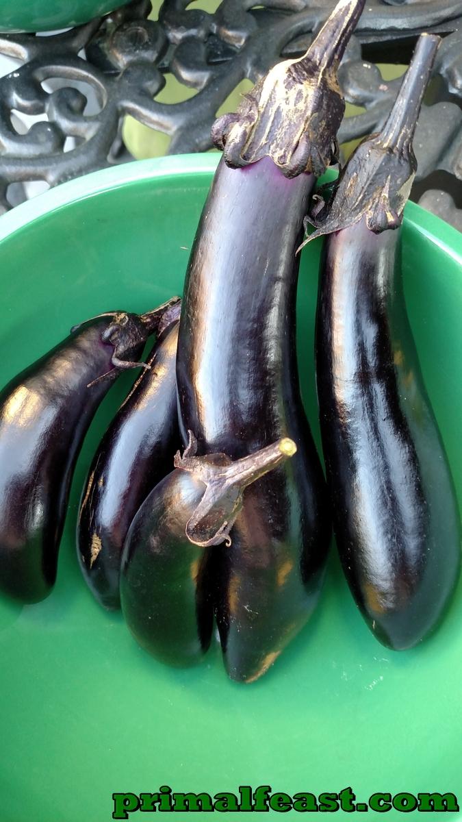 2015-1204-japanese-eggplant-001.jpg