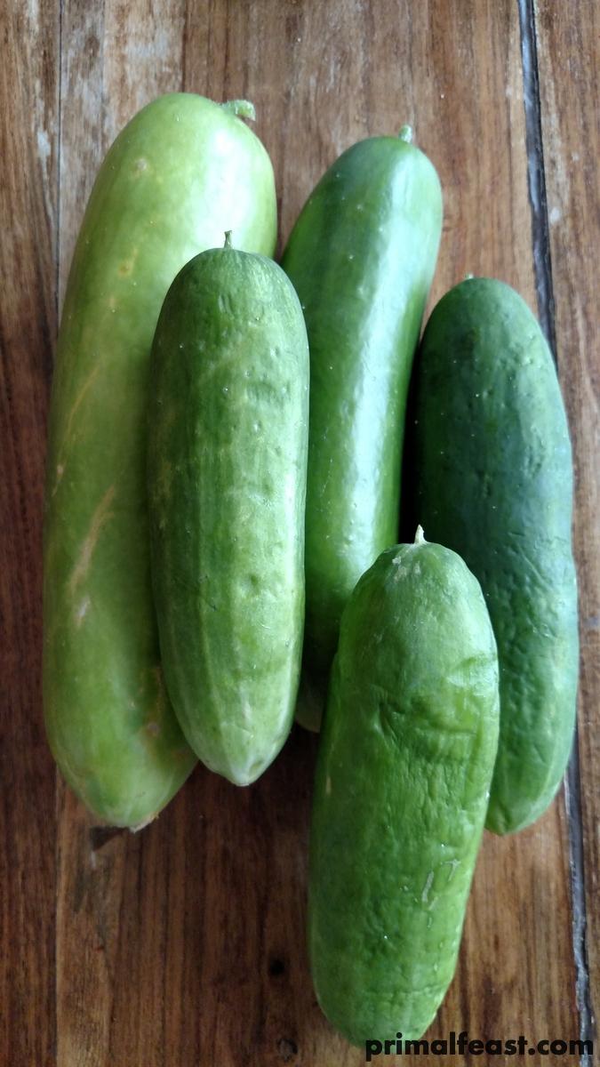 2016-0713-cucumbers-001.jpg