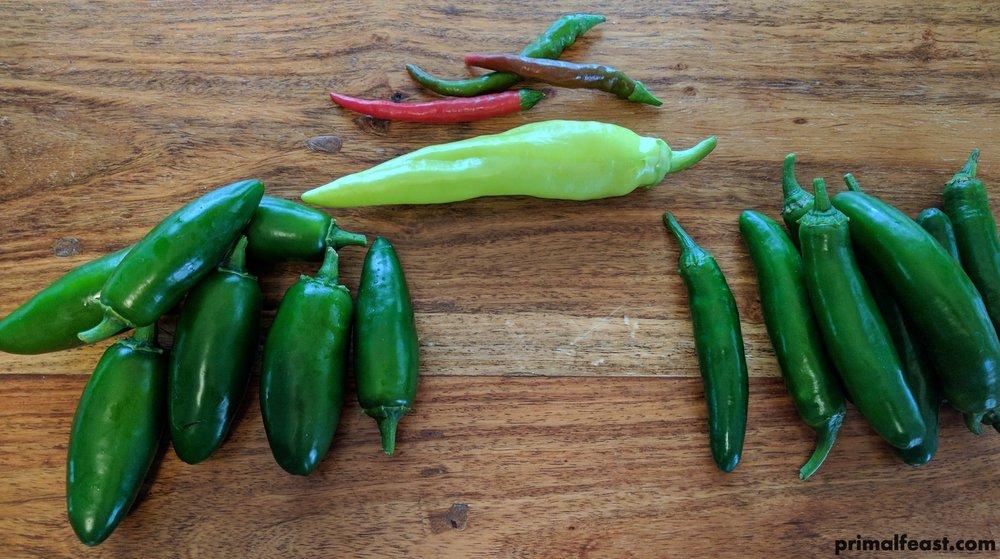 2017 0621 hot peppers 002.jpg