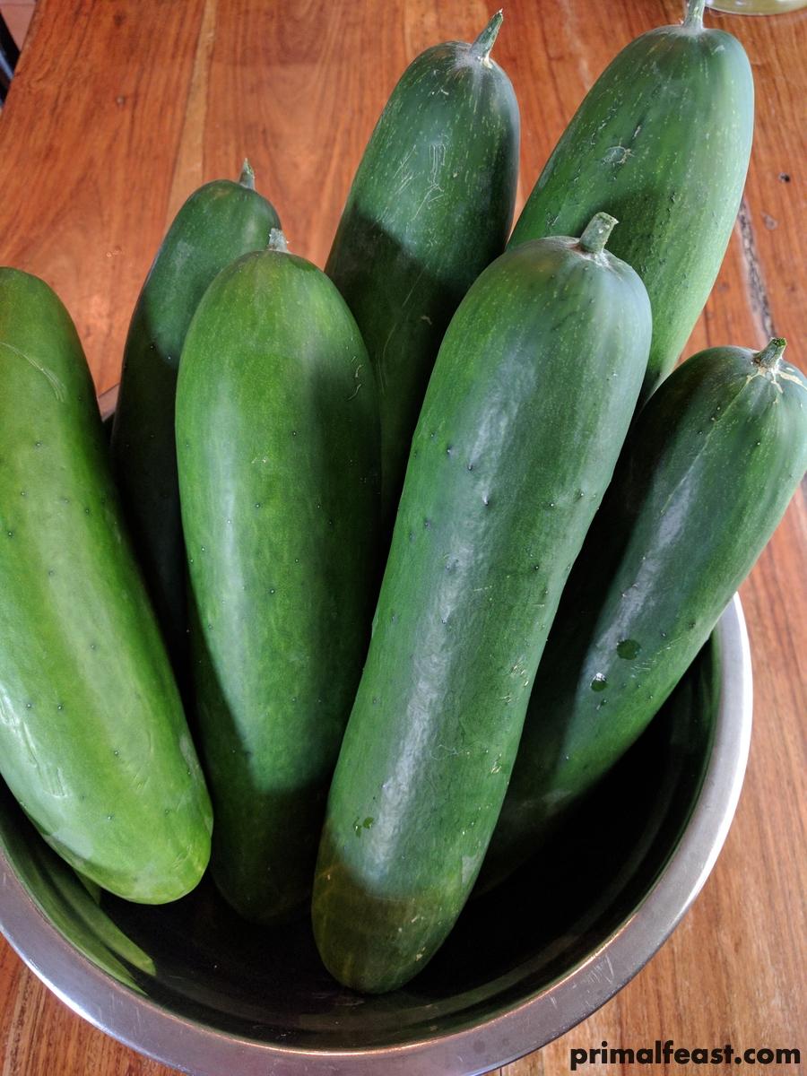 2017 0708 cucumbers.jpg