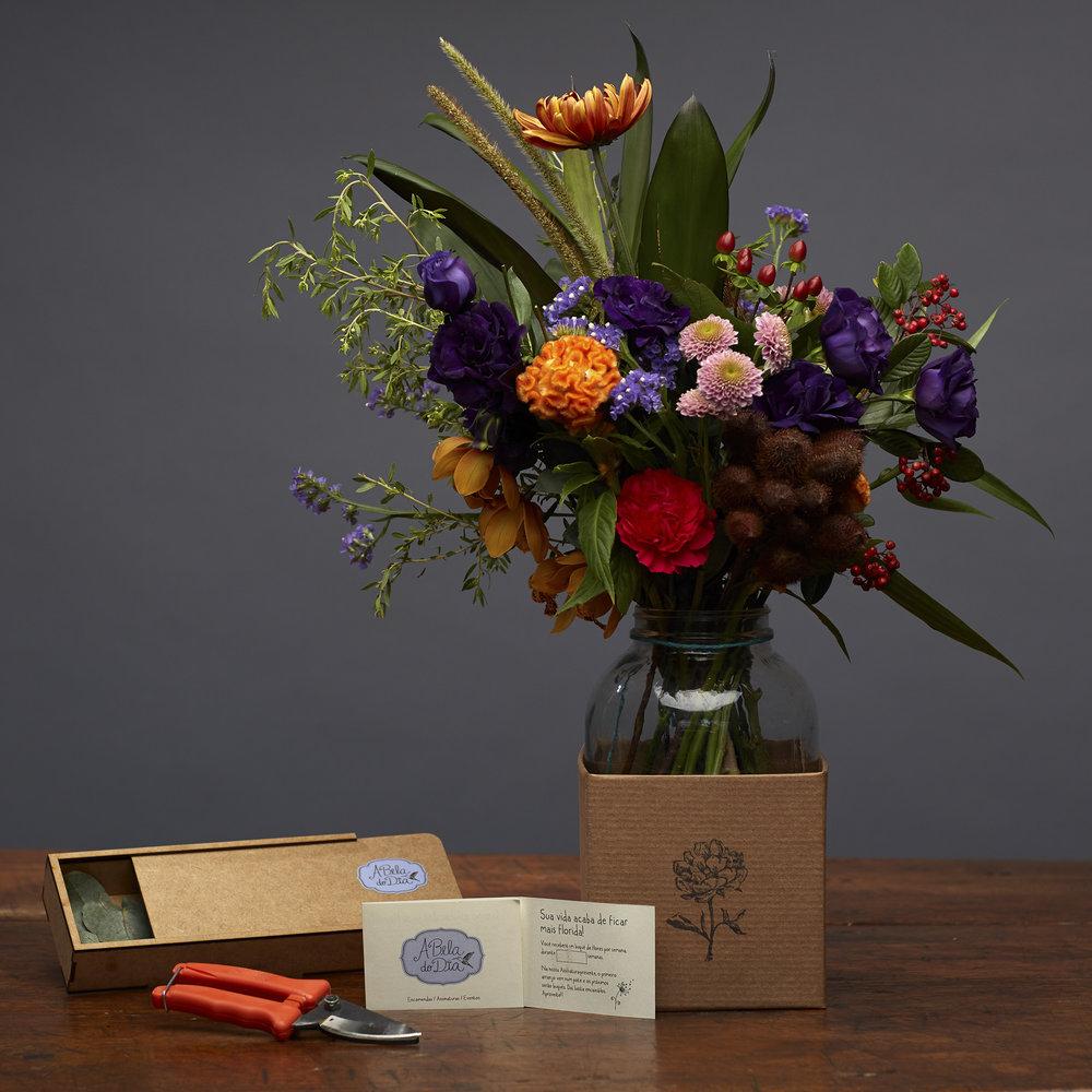 Assinatura Presente:  Um presente para ser lembrado por um mês. O primeiro arranjo vai no Pote, com uma tesoura de poda para manutenção das flores e um voucher numa caixinha de madeira.  R$295