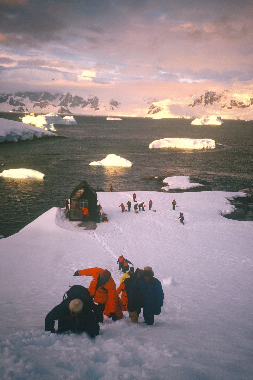Antarctic photo Carol Dec 95.jpg