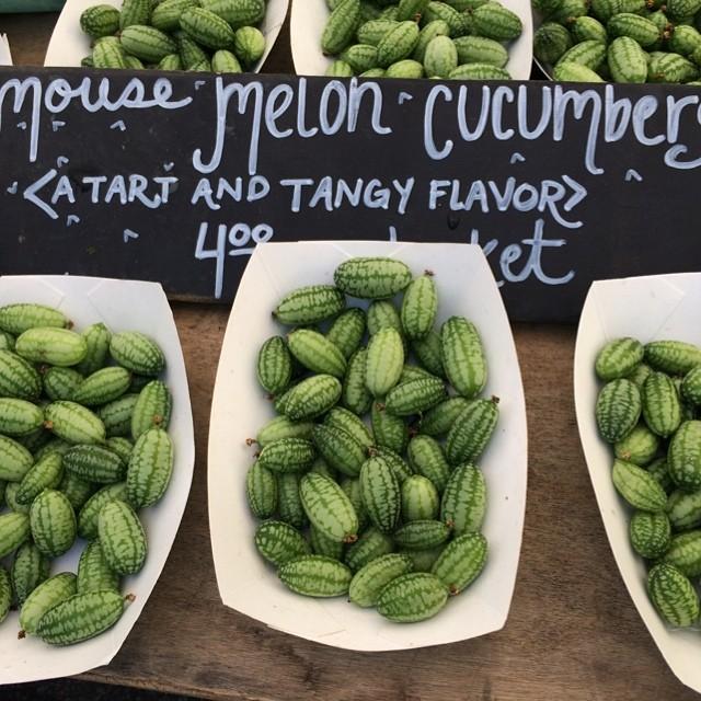 """Santa Monica Farmers' Market"""