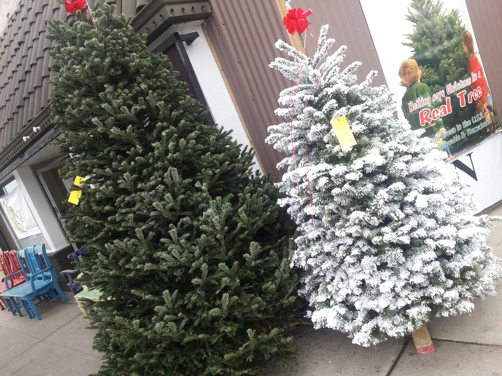 Delancey Street Christmas Trees Return to Venice — Lincoln & Rose