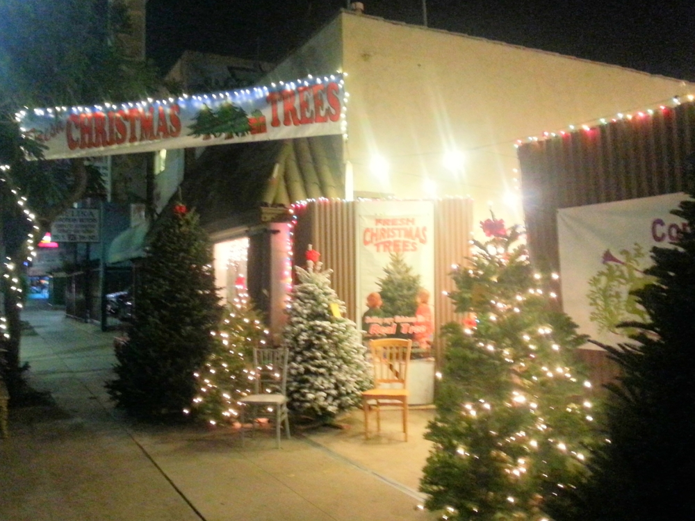 Outdoorlights.jpg - Delancey Street Christmas Trees Return To Venice €� Lincoln & Rose