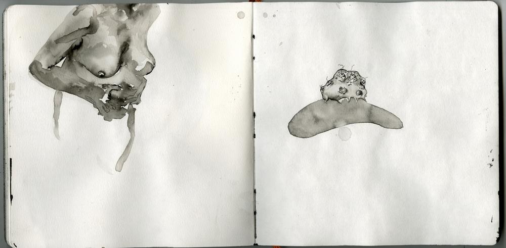 Scan 11.jpg