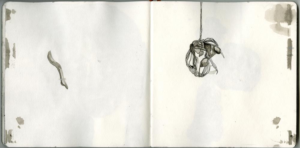 Scan 15.jpg