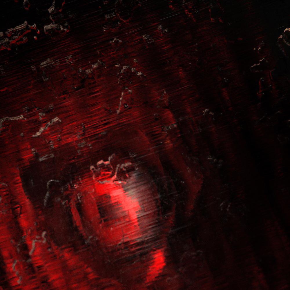 rose_05.jpg