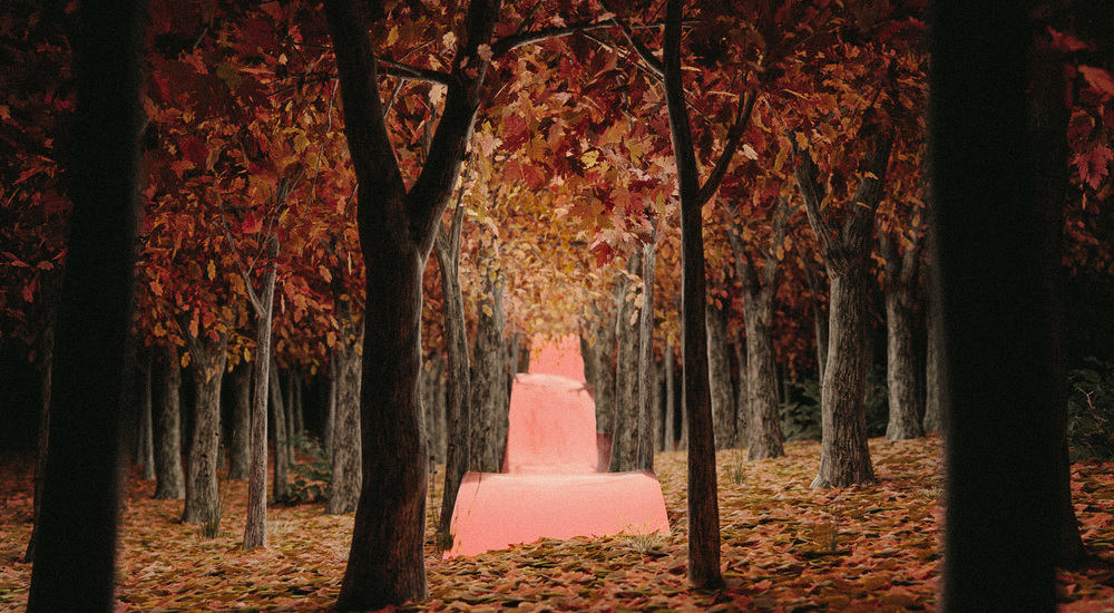 autumnTrees0010..jpg