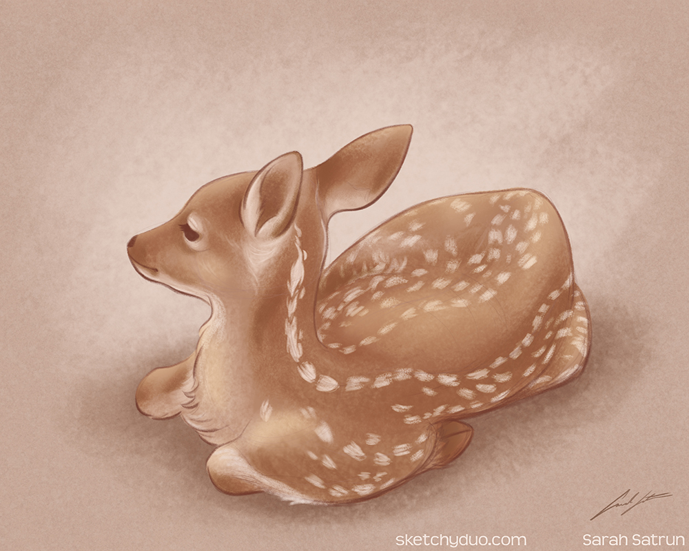 BabyDeer_Sketches_072018_small.jpg