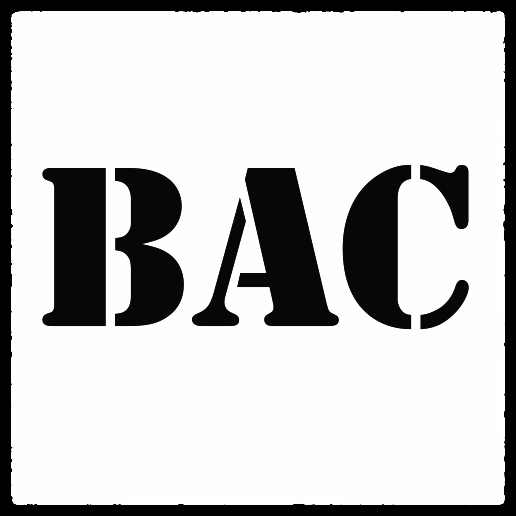 """Get BAC!"" - Boutique Activist Consultancy."