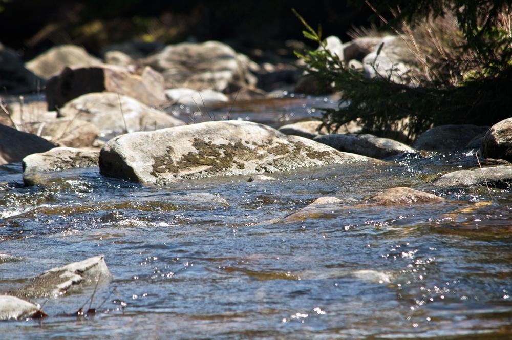 nature, water, river, stream, creek