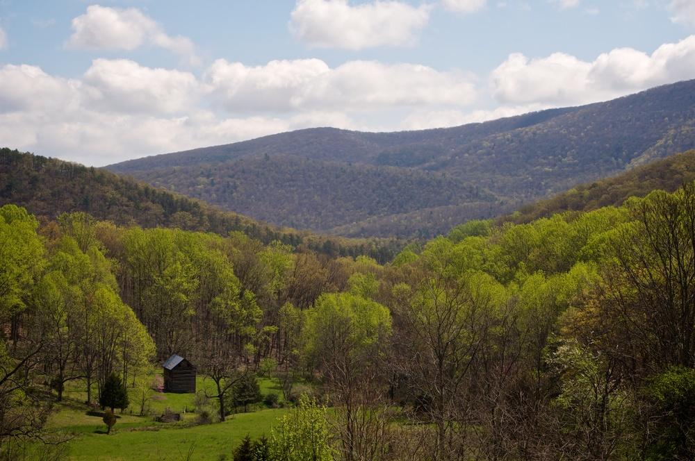 nature, landscape, trees, forest, mountains, ridges, clouds, sky, valley, monongahela, smoke hole