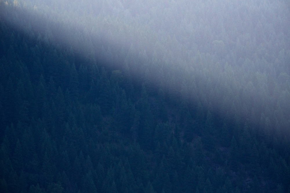 nature, light, sunlight, mountains, pine trees, pacific northwest, salmo-priest