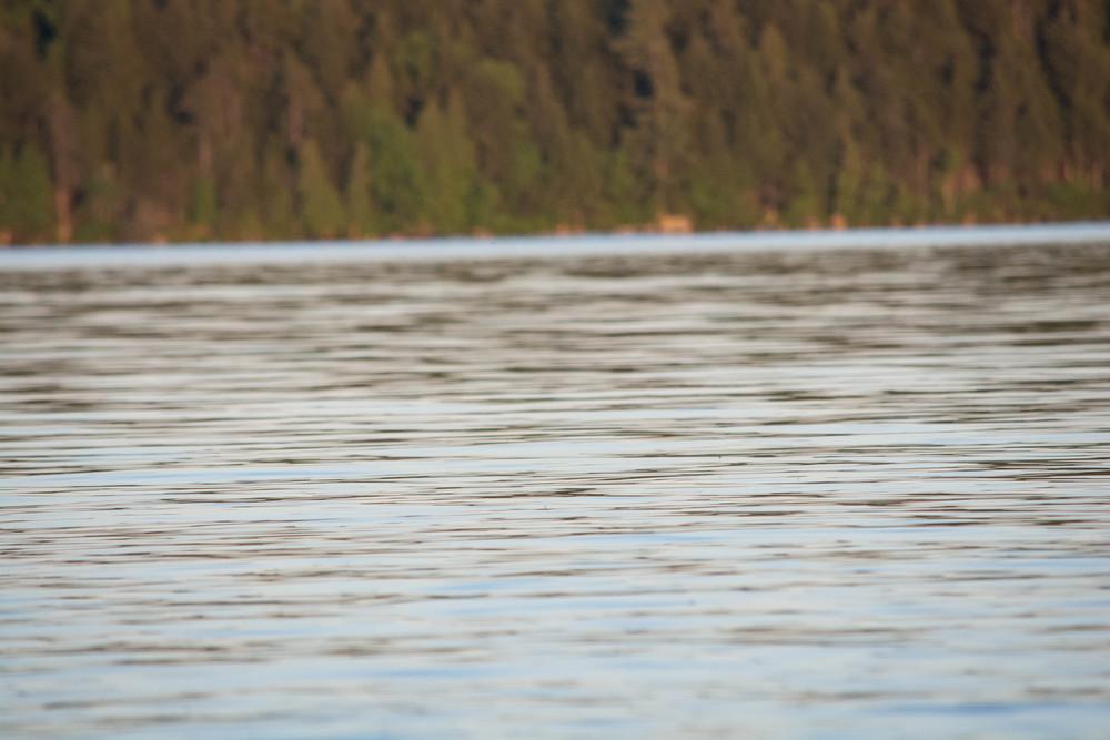 nature, forest, lake, meacham lake, adirondacks