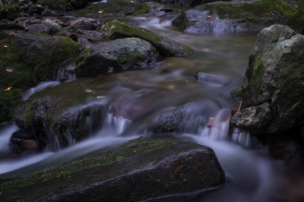 nature, creek, stream, river, water, running water, rocks, moss