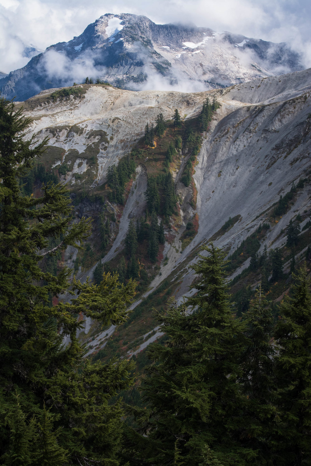 nature, landscape, north cascades, evergreen
