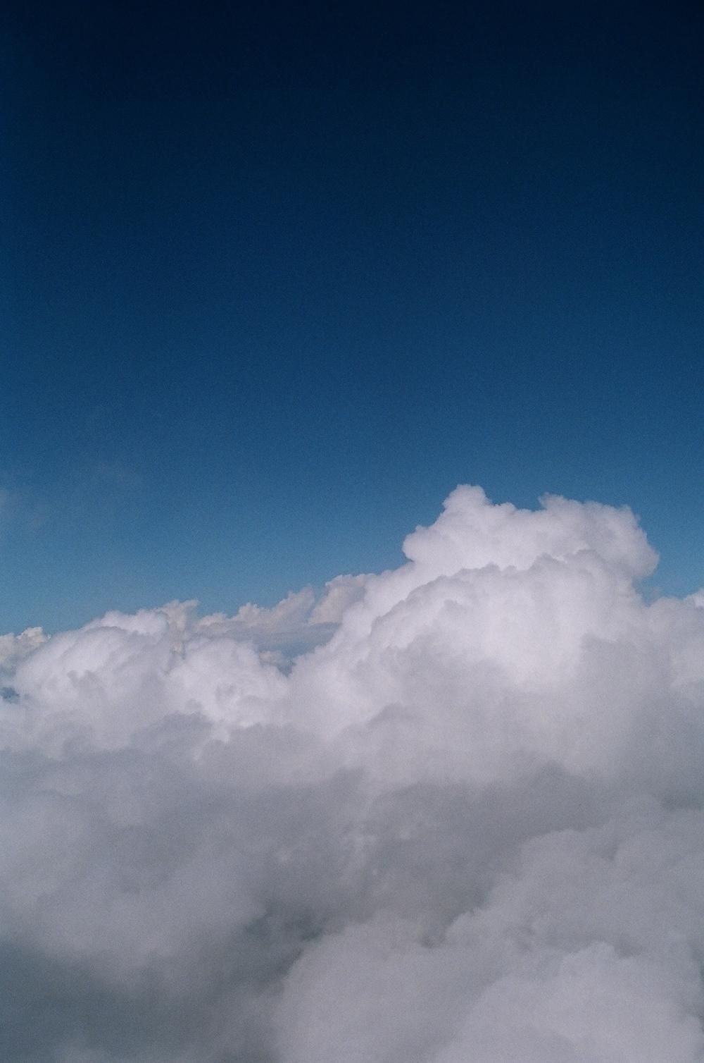 16890014.jpg