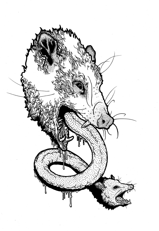 "Fauna # 3 ""Oppossum"" 2017"