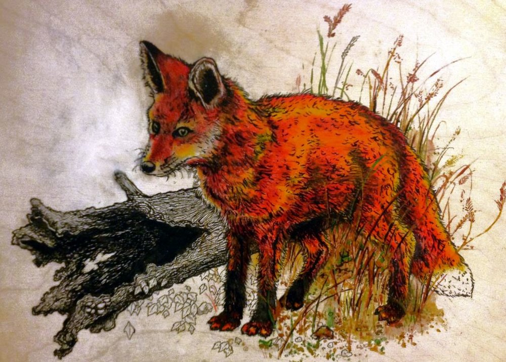 """Ticonderoga Fox"" 2012"