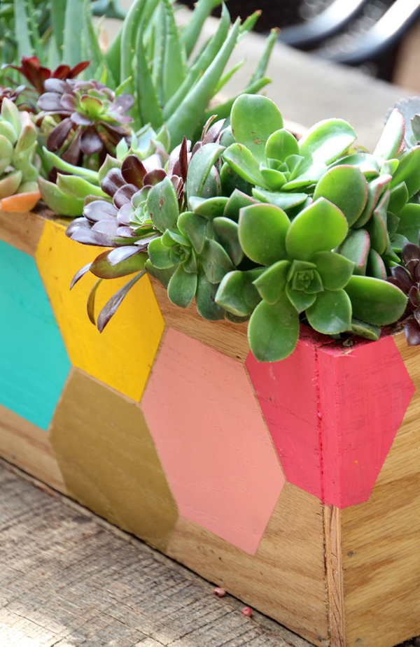 hexagonplanter_finished_closeupvertical2_800