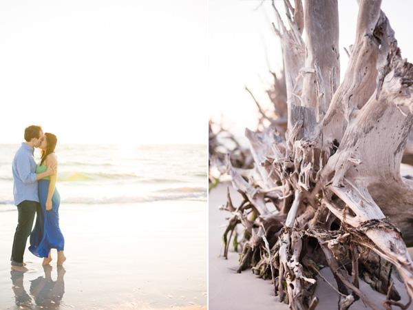 driftwood-+-beach