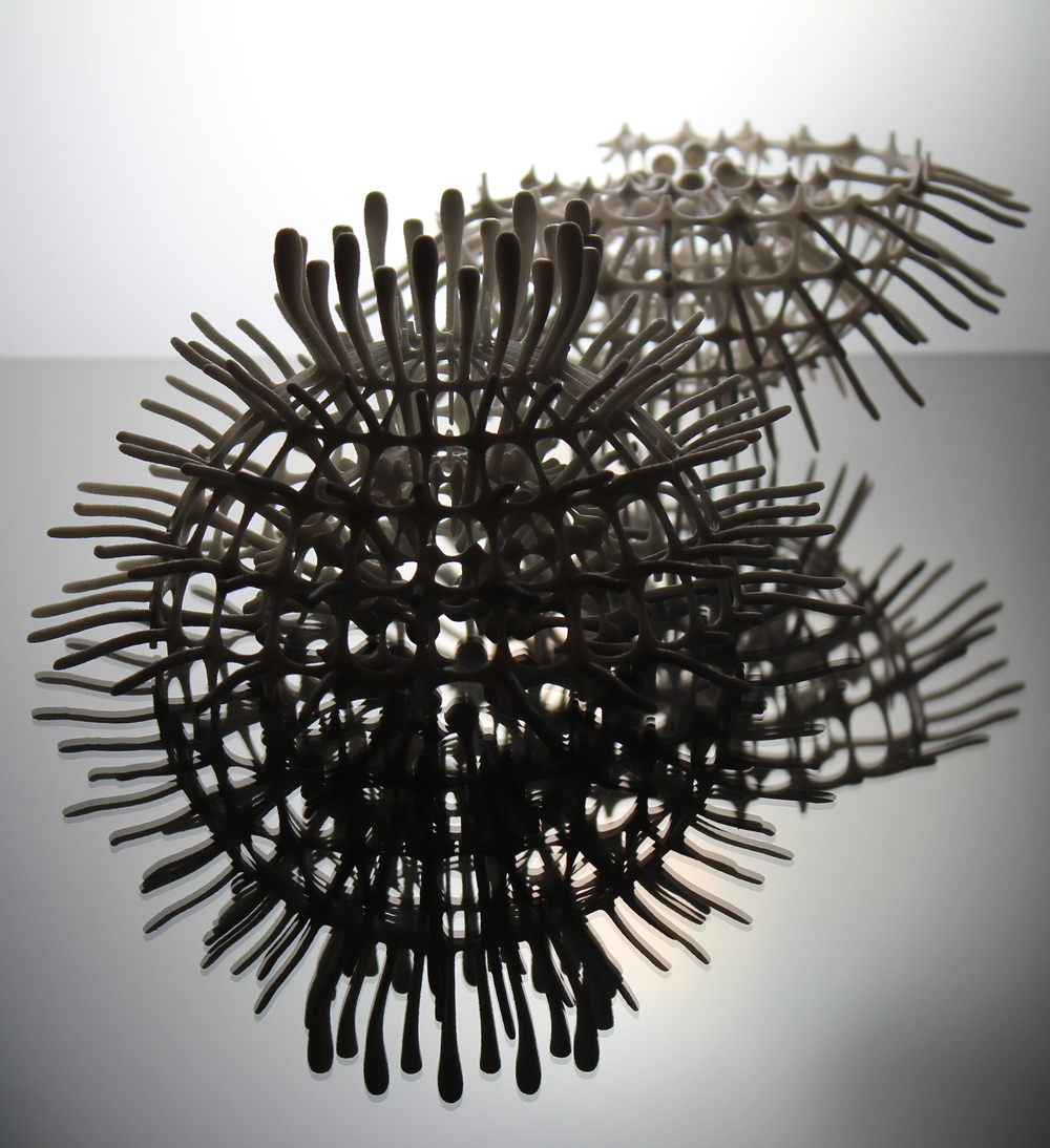 Radiolaria forms (Digital sculptures l 2013)