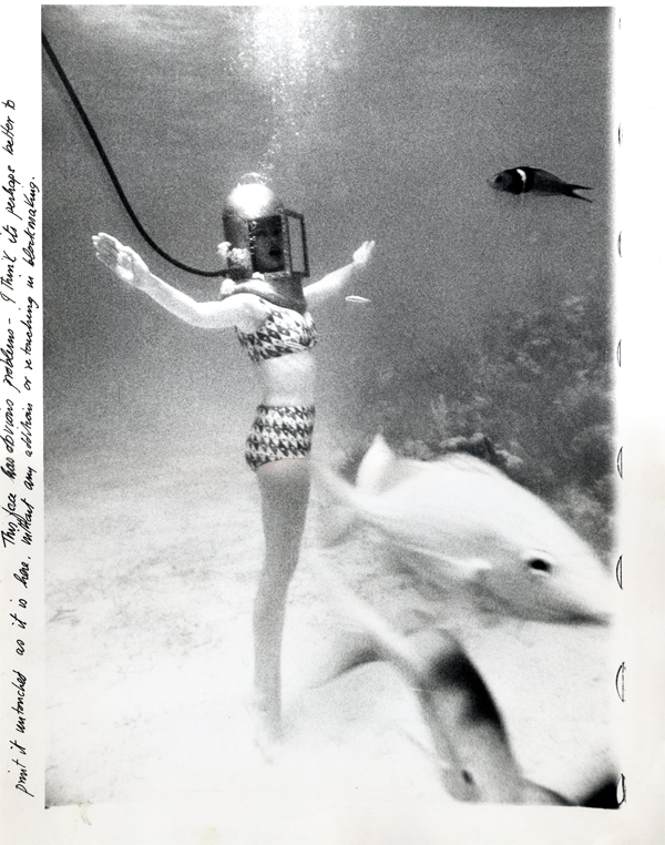 katespadeny :      norman parkinson, bikini