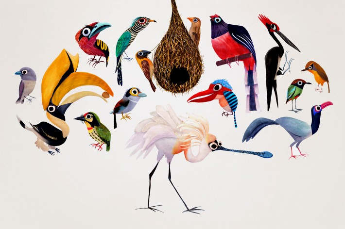 tdylan :     brendan wenzel     birds birds.  i want a print of this.