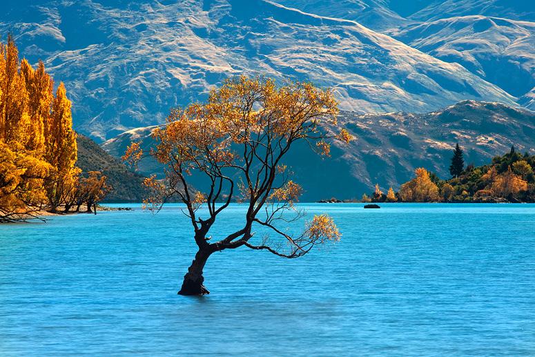 anabundanceofbeautiful :      yerawizardharry :      patbby :      travelthisworld :     Wanaka, New Zealand by Kah Kit Yoong