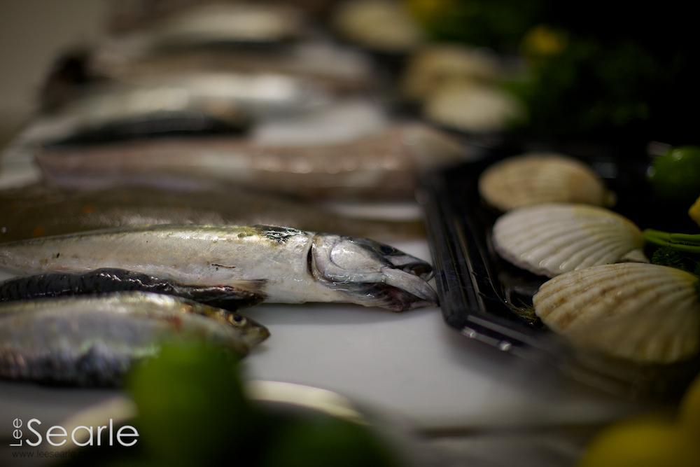 Newyln-fish-festival 10.jpg