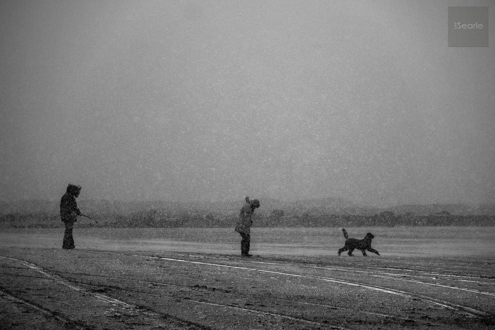 lee-searle-photography-1-4.jpg