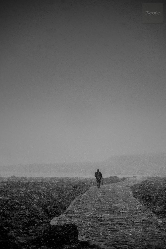 lee-searle-photography-1-9.jpg