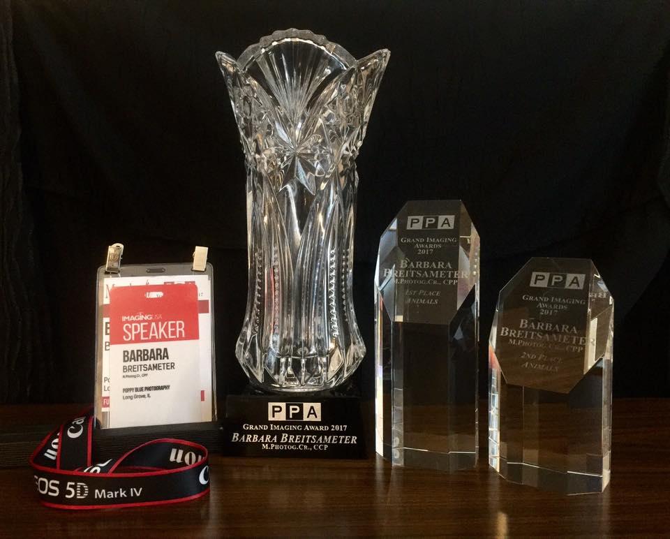 awardsGIA.jpg