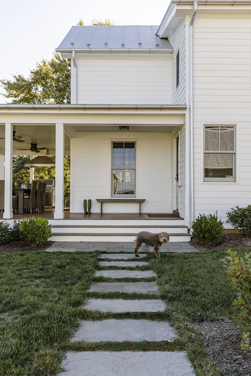 virginia_landscape-architect_farmhouse_modern-dog_Grounded.jpg