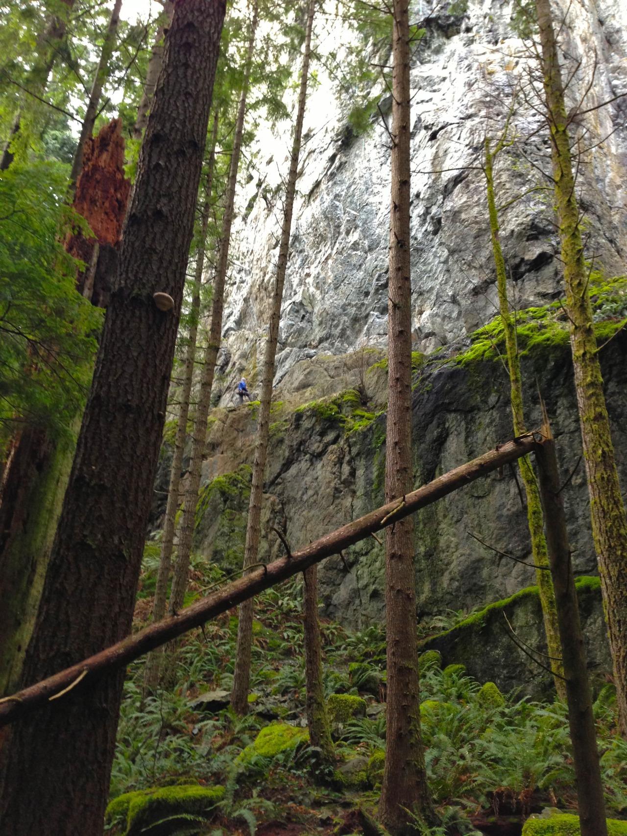 Spot the rock climber.