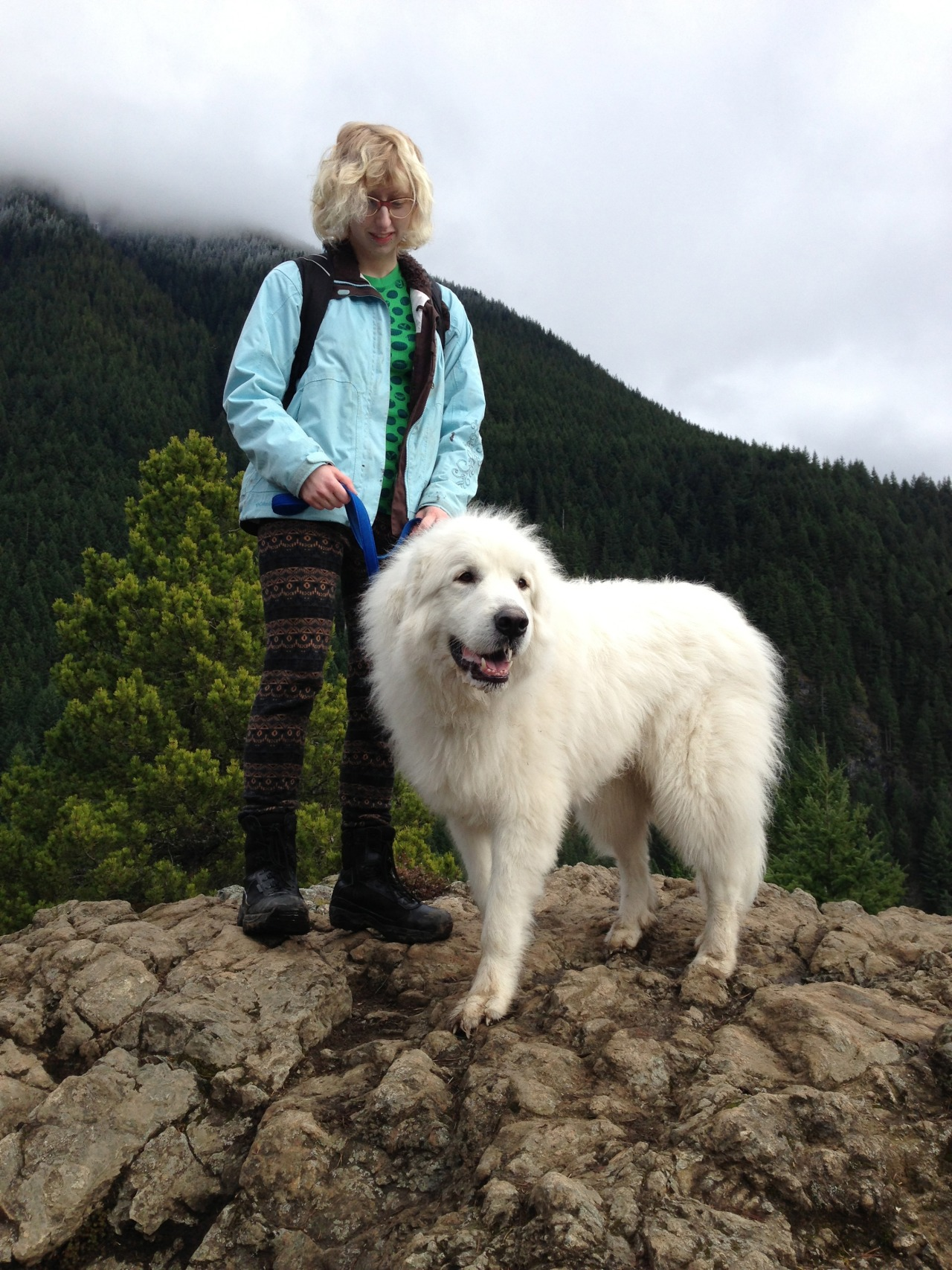 Met this fluffy polar bear at the peak!