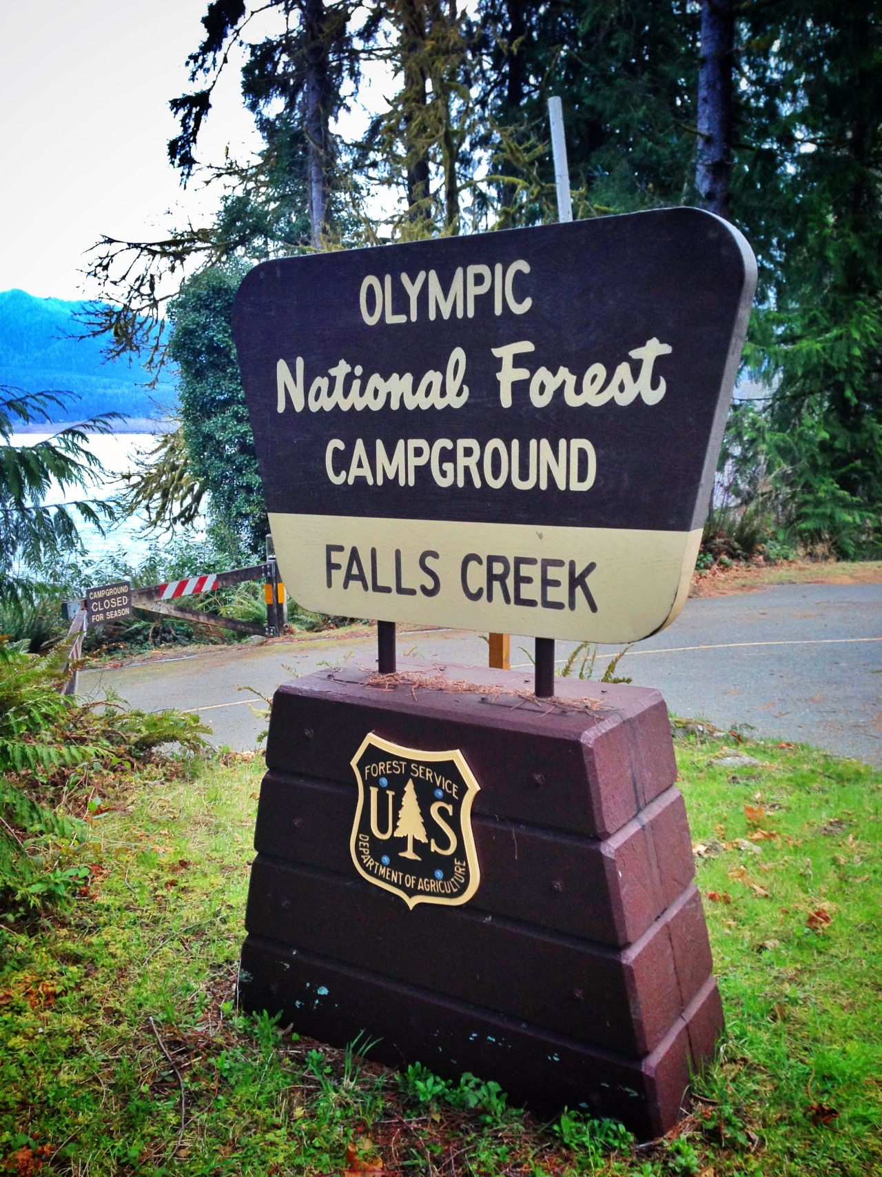 olympic national forest campground